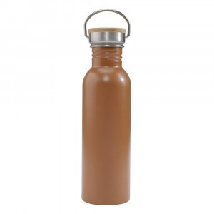 Haps Nordic Drinkfles (750 ml) Terracotta