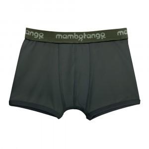Mambotango Boxer Grijs