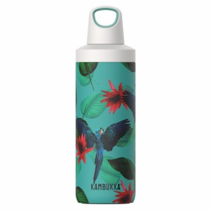 Kambukka Drinkfles RENO Insulated 500 ml Parrots