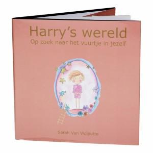 Leesboek Harry's Wereld
