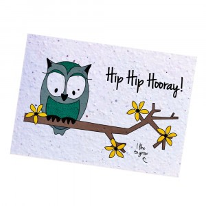 "Bloom Your Message Postkaart Flowers Owl ""Hip Hip Hooray"""