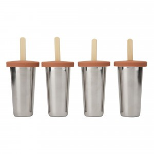 Haps Nordic IJslolly Vormpjes (4-pack) Terracotta