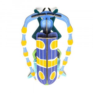 Studio Roof 3D Insects - Rosalia Beetle