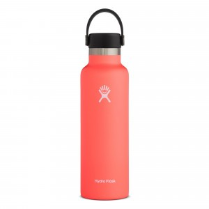 Hydro Flask Insulated Drinkfles Standard Mouth w/ Standard Flex Cap (621 ml) Hibiscus