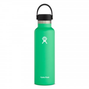 Hydro Flask Drinkfles Standard Mouth w/ Standard Flex Cap (621 ml) Spearmint