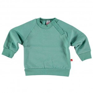 Limobasics Sweater Mosgroen