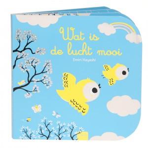 Clavis Leesboekje Wat is de lucht mooi